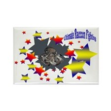 Racoon Ultimate Fighting Rectangle Magnet