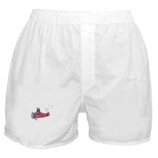 Valentine Airplane (Brindle) Boxer Shorts