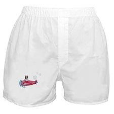 Valentine Airplane (Pied) Boxer Shorts