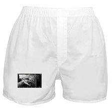 Cute Austrian economics Boxer Shorts