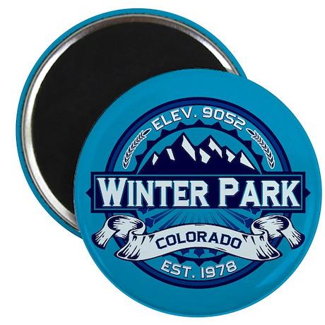 Winter Park Ice Magnet