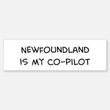 Co-pilot: Newfoundland Bumper Bumper Bumper Sticker