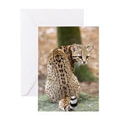 Geoffroy Cat Greeting Card