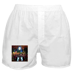 Two Cats And The Moon Boxer Shorts