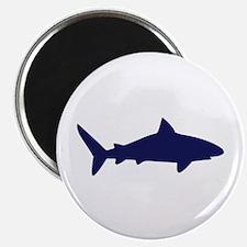 """Shark 2.25"""" Magnet (10 pack)"""