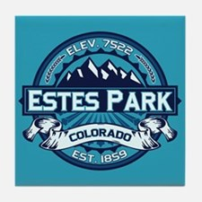 Estes Park Ice Tile Coaster