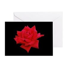 Romantic Red Rose Greeting Card