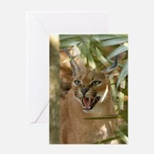 Caracal Lynx Greeting Card