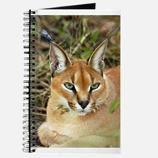 Caracal Lynx Journal
