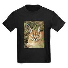 Caracal Lynx T