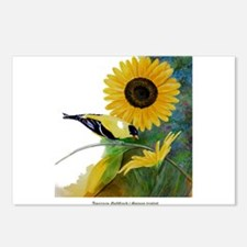 Goldfinch and Sunflower Postcards (Package of 8)