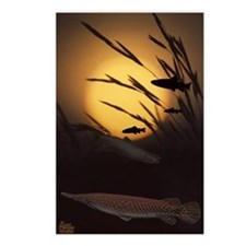 Fish Farm Postcards (Package of 8)