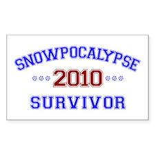 Snowpocalypse - Decal