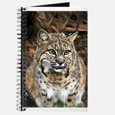Bobcat Journal