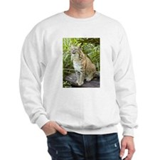 Bobcat Sweatshirt