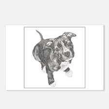 Grey Tile Pitbull Postcards (Package of 8)