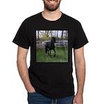 Baron Trot Black T-Shirt