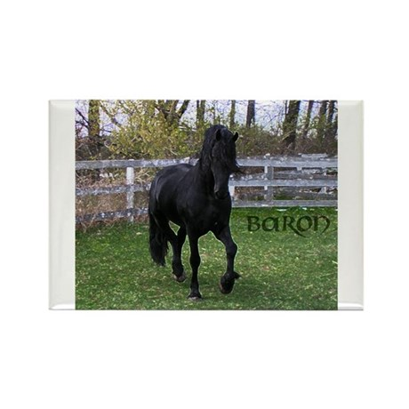 Baron Trot Rectangle Magnet (10 pack)