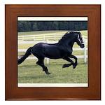 Baron Galloping Framed Tile