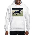 Baron Galloping Hooded Sweatshirt