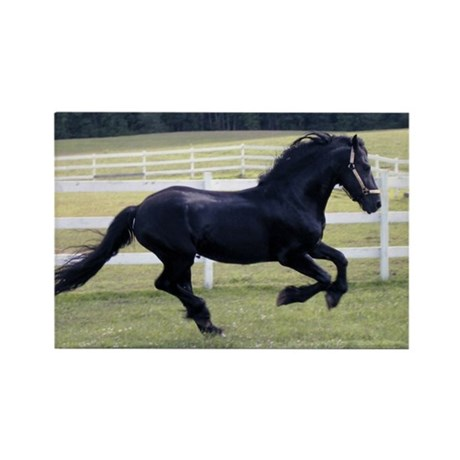 Baron Galloping Rectangle Magnet (10 pack)