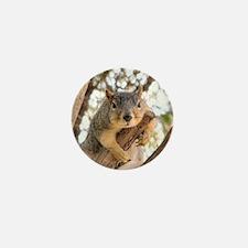 Unique Squirrels Mini Button