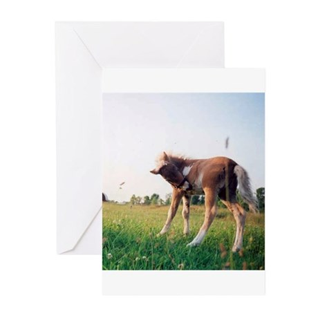 Prince Greeting Cards (Pk of 10)