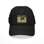 Pinto Foxtrotter Black Cap