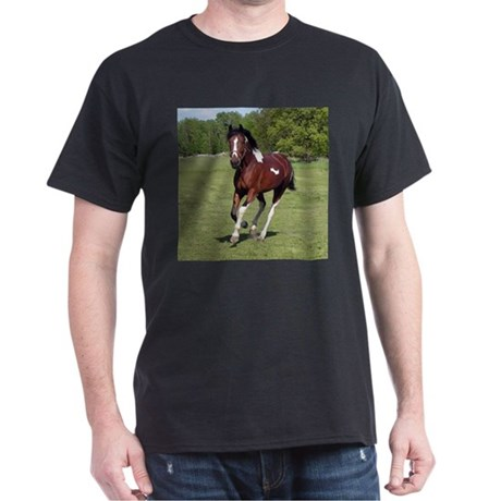 Pinto Foxtrotter Black T-Shirt