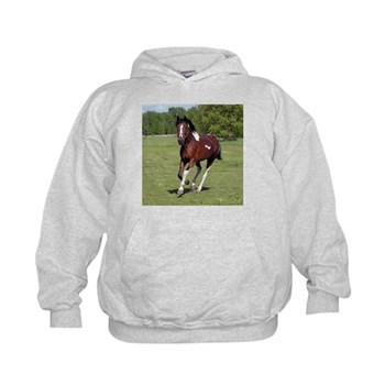 Pinto Foxtrotter Kids Hoodie