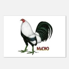 Macho Duckwing Gamecock Postcards (Package of 8)