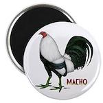 Macho Duckwing Gamecock Magnet