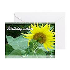 Sunflower Birthday Cards 5x7 (Pk of 20)