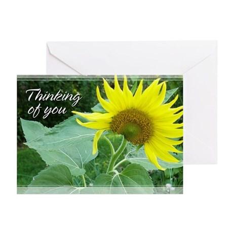 Sunflower Thinking of You Cards 5x7 (Pk of 20)