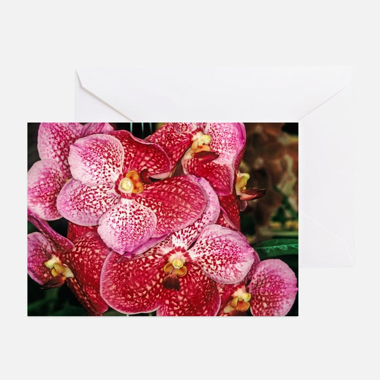 Orchid Flower Photo Greeting Cards (Pk of 10)