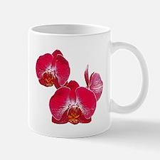 Orchid Flower Photo Mug