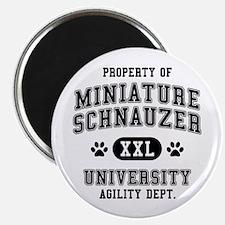 Property of Miniature Schnauzer Univ. Magnet