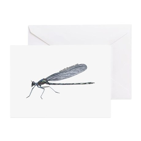 Damselfly Greeting Cards (Pk of 20)