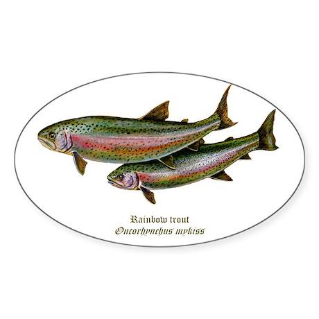 Rainbow Trout Sticker (Oval)