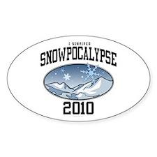 I Survived Snowpocalypse 2010 Decal