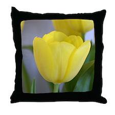 Springtime Delight Throw Pillow