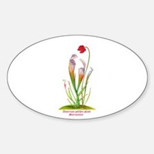 American Pitcher Plant Decal