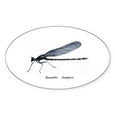 Damselfly Decal