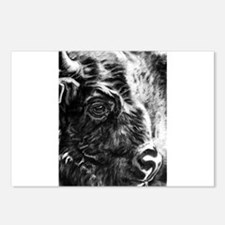 Unique Water buffalo Postcards (Package of 8)