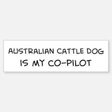 Australian Cattle Dog Bumper Car Car Sticker