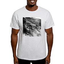 Unique Pictures of dolphins T-Shirt