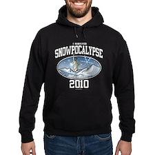 I Survived Snowpocalypse 2010 - New York City Hood