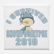 Snowpocalypse 2010 Tile Coaster