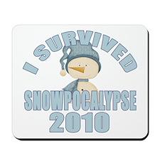 Snowpocalypse 2010 Mousepad
