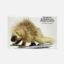 North American Porcupine Rectangle Magnet